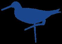 sandpiper-blue